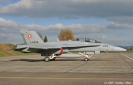 Swiss F/A-18 Hornet Fleet
